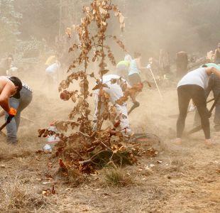 #JóvenesXElSur: Lanzan campaña para que jóvenes ayuden como voluntarios tras incendios