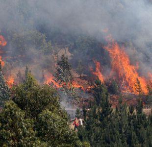 Las medidas con que las empresas eléctricas se preparan para temporada de incendios