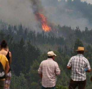 Onemi decreta Alerta Temprana Preventiva en Región del Ñuble por amenaza de incendios forestales