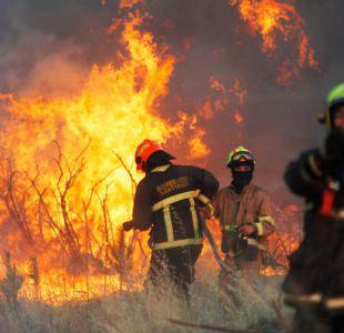 Formalizan a ejecutivos de CGE por origen de incendios en región de OHiggins