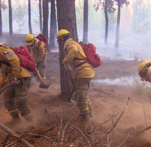 [VIDEO] Acusan a cuadrilla eléctrica de haber originado incendio en Navidad
