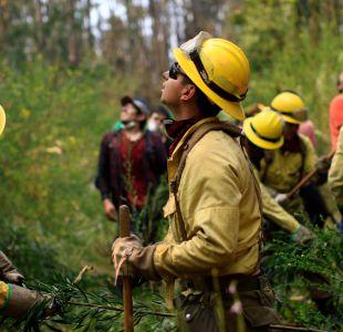 Cadem: aprobación a gestión de Conaf en incendios forestales baja 13 puntos