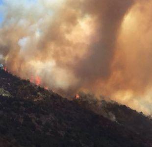 Incendios: Onemi declara alerta roja para Viña del Mar y Valparaíso