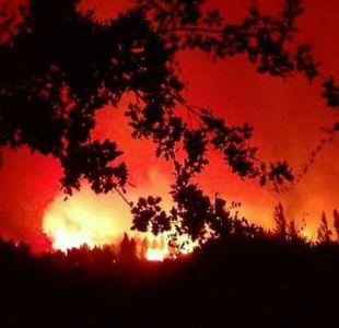 Parral: autoridades monitorean incendio forestal que ya consumió 40 viviendas