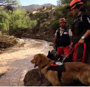 [FOTOS] Imágenes registran el trabajo en terreno de las autoridades tras aluvión en Los Andes