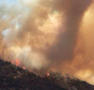 [Minuto a minuto] Incendios forestales afectan a Viña del Mar y Valparaíso