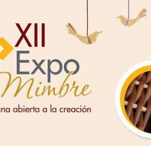 Américo, Gepe y La Combo Tortuga estarán en la XII versión de la Expomimbre