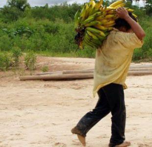 Los hombres tsimané están activos durante una media de 6 o 7 horas al día.