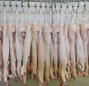 Escándalo del mercado cárnico en Brasil: Carne podrida y maquillada con productos cancerígenos