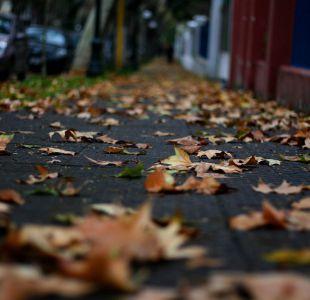Se acabó el verano: Esta mañana comenzó oficialmente el otoño