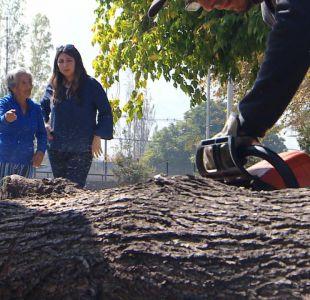 [VIDEO] Vecinos de Recoleta protestan contra la intervención de un parque