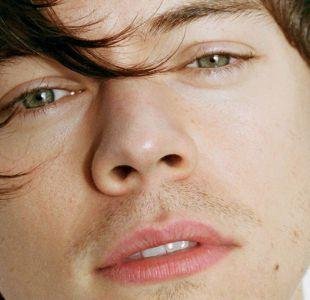 Harry Styles responde a Zayn Malik por sus polémicos dichos sobre la música de One Direction