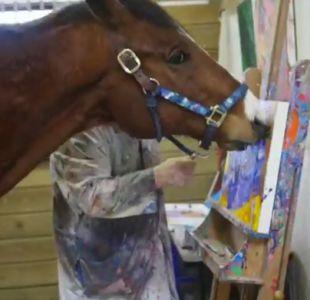 [VIDEO] Metro: el caballo que financia su tratamiento médico con sus obras de arte