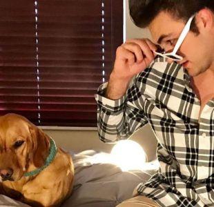 Ross Henderson: el veterinario que les canta a sus pacientes