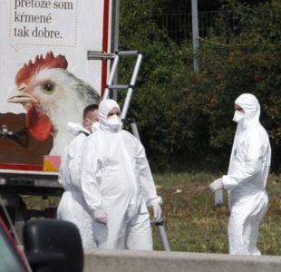 Si mueren, que los descargue en un bosque en Alemania: detalles de un juicio escalofriante