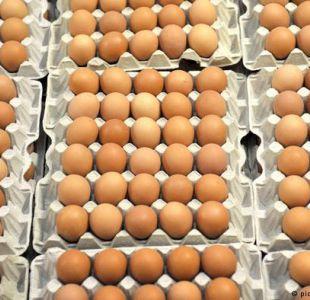 Cadena alemana Aldi retira todo su stock de huevos