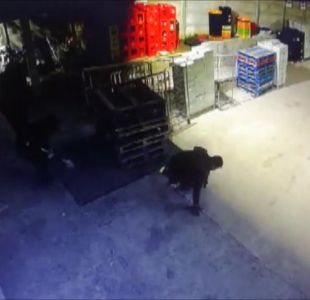 [VIDEO] Robo en supermercado: Viajaron desde Santiago a Valparaíso