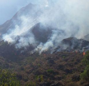 Chile ofrece ayuda a Bolivia por incendios forestales que ya dejan un muerto