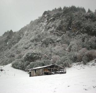 Intensas nevadas dejan a miles de familias aisladas en La Araucanía.