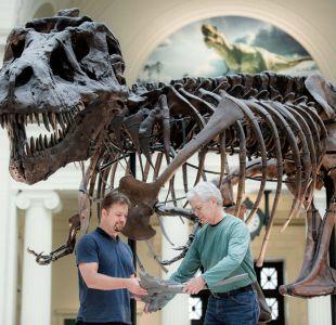 Los científicos del museo Field Pete Makovicky (izquierda en la imagen) y Bill Simpson con un molde de la gastralia de la tiranosaurio SUE para mostrar dónde sera exhibido su esqueleto en el recinto de Chicago, EEUU