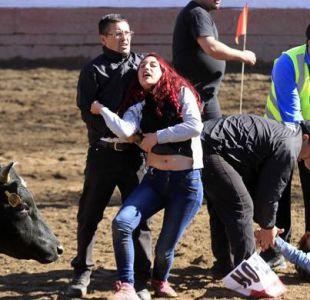 29 detenidos tras manifestación contra el rodeo en Parque Padre Hurtado