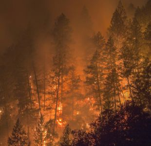 California usa reclusos para sus incendios forestales