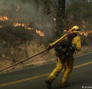 Hasta el momento, más de 30 personas han perdido la vida en los incendios forestales.