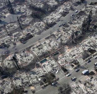 Conmovedor reencuentro: Aparece perrita perdida tras incendios en California