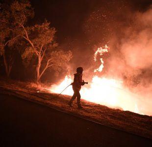 [FOTOS] Desoladoras imágenes de incendios que afectan a Portugal