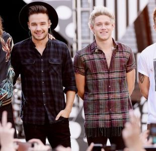 El extraño caso de la fan de One Direction que gritó tanto que se rasgó un pulmón