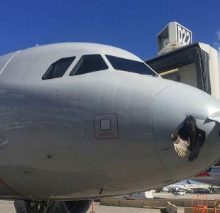 La impresionante fotografía de la colisión entre un avión y un pájaro en Miami