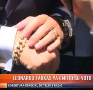 La puslera de Leonardo Farkas