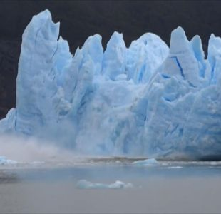 [VIDEO] Glaciar Grey desprende iceberg gigante