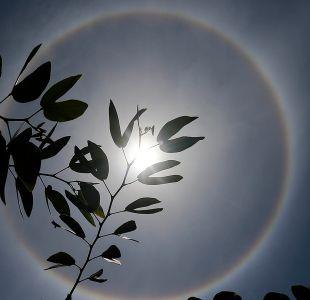 Halo solar: las imágenes del fenómeno en Santiago