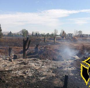 Declaran alerta roja en Colina por incendio forestal