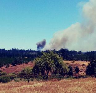 Onemi declara Alerta Roja en Portezuelo por incendio forestal