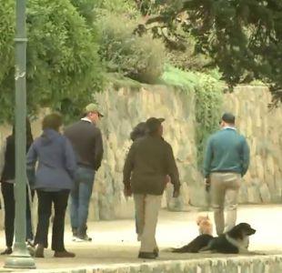 [VIDEO] Municipios prohíben mascotas en la playa