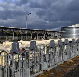 Ochenta y tres países afectados por escándalo de salmonela en leche francesa