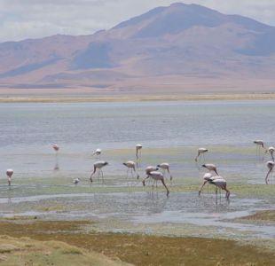 [VIDEO] Diario de ruta: San Pedro de Atacama