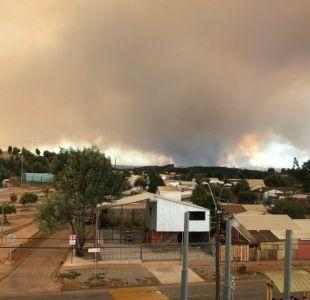 Ercilla: Incendio forestal deja a bombero herido y destruye más de 1700 hectáreas