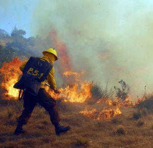 Conaf confirma que 70% del incendio forestal en Ercilla está contenido