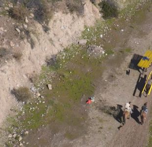 [VIDEO] Banda utilizaba burros para robar en la precordillera de Rancagua
