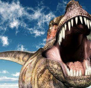 Los dinosaurios tuvieron tanto éxito en la Tierra que se quedaron sin espacio y desaparecieron