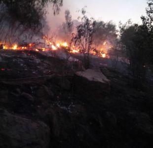 Parque Metropolitano investigará presunta acción dolosa en incendio que afectó a 12 hectáreas