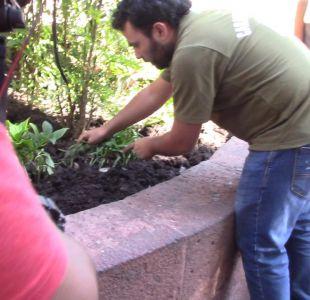 [VIDEO] Tráfico de droga y violencia en Plaza de Armas