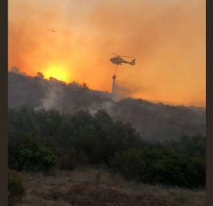 Viña del Mar: Onemi declara alerta roja por focos de incendio cercanos al Jardín Botánico