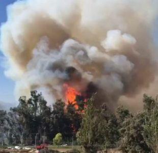 Incendio forestal en las cercanías del Hospital Psiquiátrico el Peral