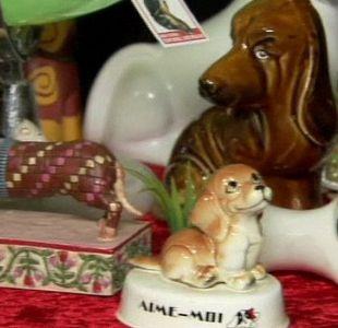 El divertido y curioso primer museo dedicado al llamado perro salchicha
