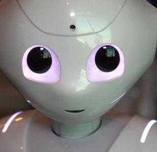 [VIDEO] Robots en vez de profesores y mascotas