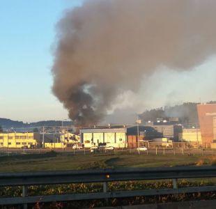 Un incendio se originó en la pesquera Blumar en Talcahuano por un desperfecto eléctrico